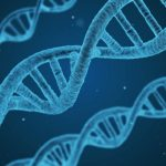 DNA Sequences on the Blockchain